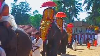 Anayadi Pazhayidam Sri Narasimha Swami Temple