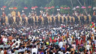Arattupuzha Pooram Festival Elephants Kerala