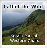 Call of the Wild - Kerala Part of Western Ghats