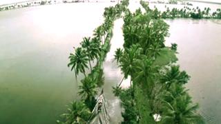 The Great Backwaters of Kerala