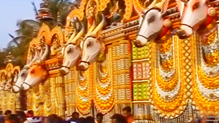 Kadapparambathu Kavu - Vela festival