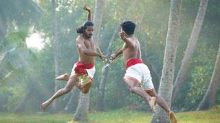 Kerala's ethnic healing system - Kalari