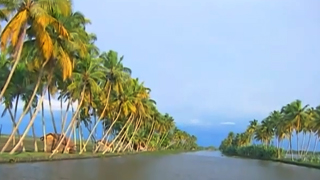 Kumarakom Backwaters in Kottayam