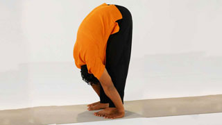 Padahastasana - The Forward Bend