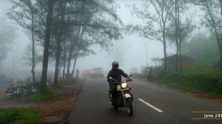 The Misty Hills of Ponmudi