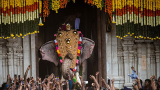 Thrissur Pooram 2019 - A Divine Extravaganza of Paramekkavu and Thiruvambadi