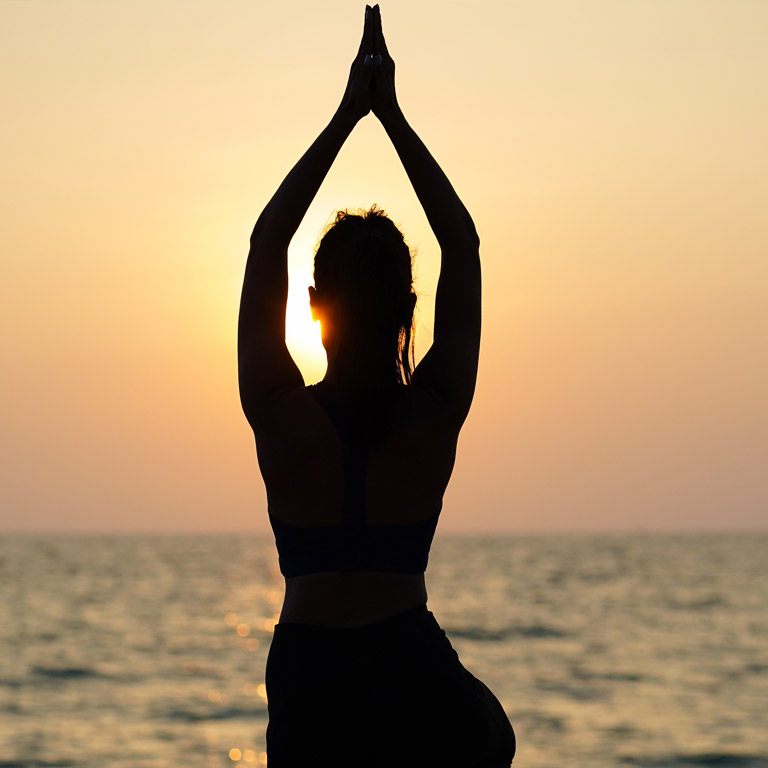 Classical Schools of Yoga