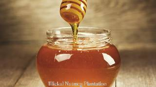 Small Bee Honey (1KG)