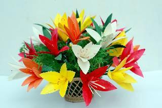 Solarwood flowers